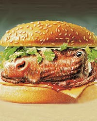 vegan 4